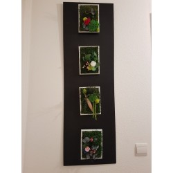 Lot de 4 tableaux